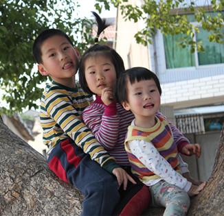 Family Feng